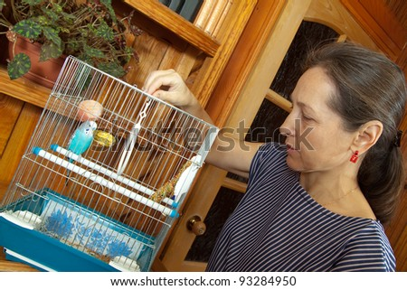 Mature woman takes care of the pet budgie.