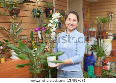 Mature woman with Dendrobium orchid  in a flower shop - stock photo