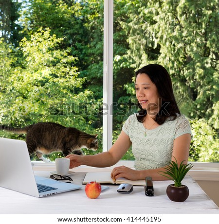 Mature woman working at home with cat and large daylight window in background.  - stock photo