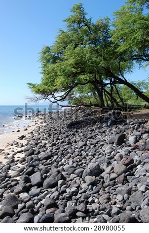 maui beach - stock photo