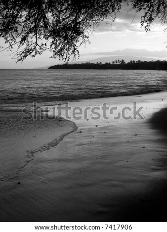 maui beach in black and white - stock photo