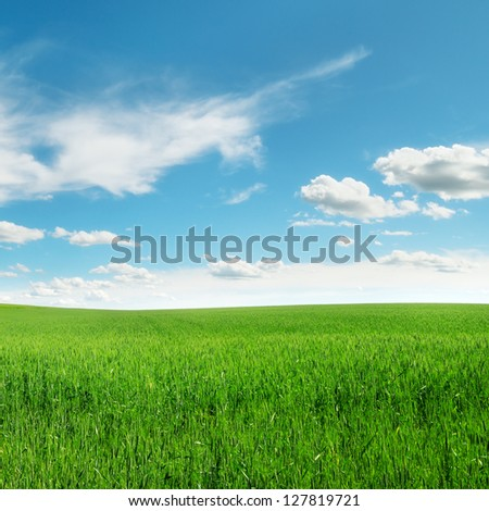 meadow and beautiful blue sky - stock photo
