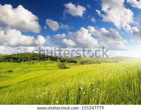 Meadow and cloudy sky. Beautiful summer landscape - stock photo