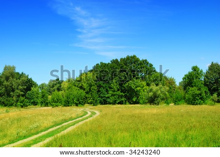 Meadow and dirt road. Summer landscape - stock photo