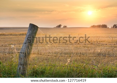 meadow and fence - stock photo
