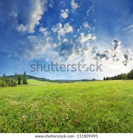 meadow and forest - countryside - stock photo