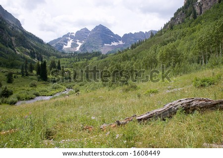 Meadow and Maroon Bells - stock photo