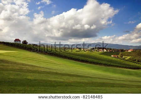 Meadow and vineyards in summer. Škalce, Slovenia - stock photo