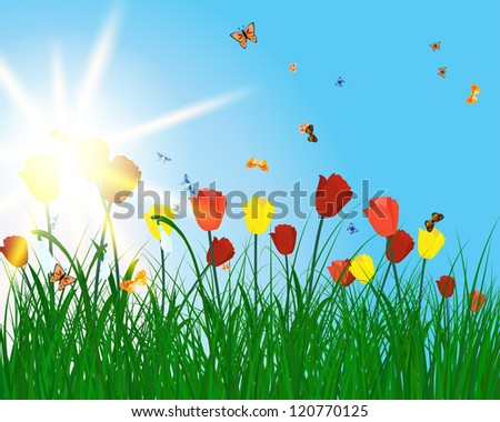 Meadow color background with butterfly and sun.  Raster version. - stock photo