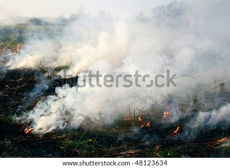 meadow fire sends out large smoke clouds after burning a grass wastelands, puffs of acrid thick smoke - stock photo