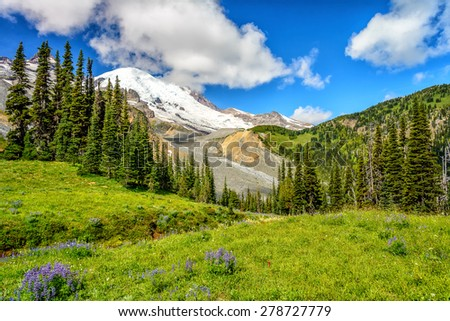 Meadow, glacier, forest and Mount Rainier, Washington state - stock photo