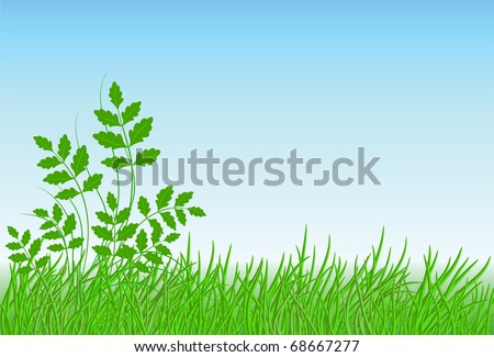 Meadow grass, sky and space for text. Raster version of vector.