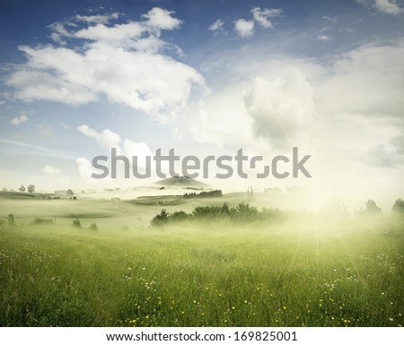 Meadow in landscape, New Zealand - stock photo