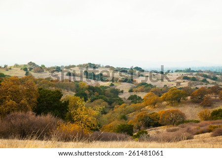 Meadow in Stanford Dish Palo Alto California - stock photo