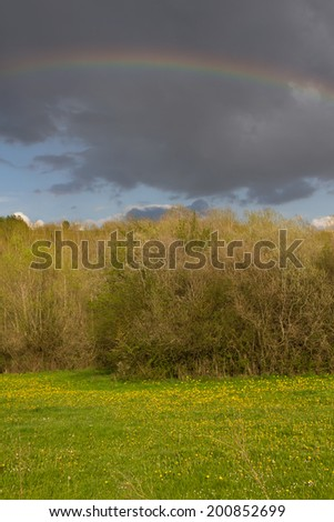 Meadow landscape with poplar trees and rainbow in the sky at sunset. After a spring storm  - stock photo