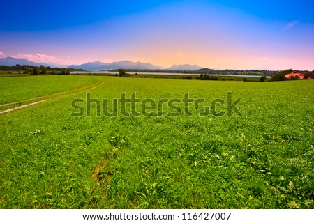 Meadow near Bavarian Lake Chiemsee, Sunset