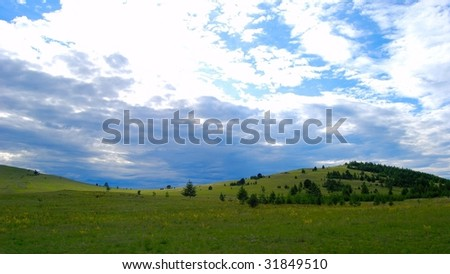Meadow. Twilight. - stock photo