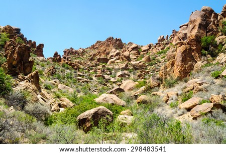 Meadow Valley at Big Bend National Park - stock photo