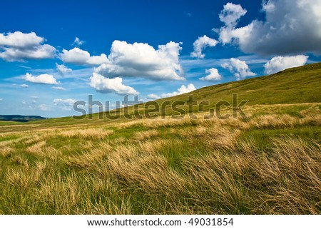 Meadow with beautiful blue sky and clouds in Summer