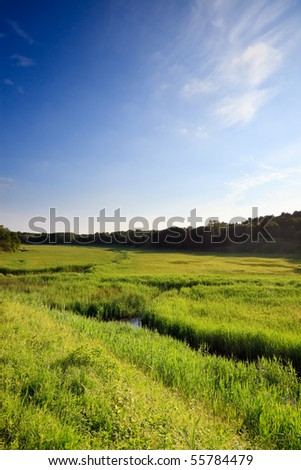 Meadow with canals and blue cloudy sky