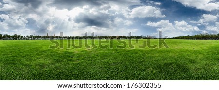 Meadow with green fresh grass and cloudy sky - stock photo