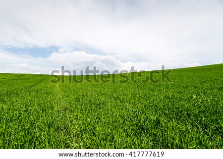 Meadow with green grass and sky with clouds - stock photo