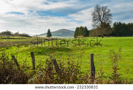 Meadow with mounds at the nature reserve Valley of Gelaengebach in Medebach, Sauerland, Germany - stock photo