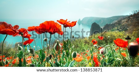 meadow with red poppy flowers against sky and sea - stock photo
