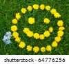 Meadow with smiley face of yellow dandelions - stock photo