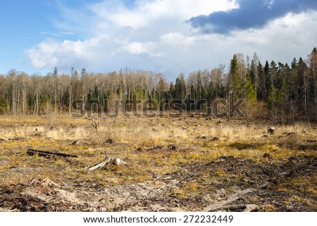 meadow with stumps after felling hack woods   - stock photo