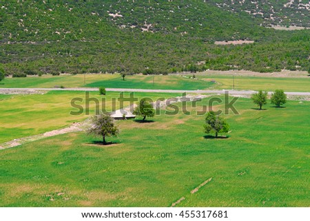Meadow with trees at the foot of the mountain