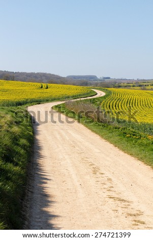 Meandering foot path dirt track winding through farmland, yellow rape seed oil crops in English countryside. Concepts looking forward, journey of life, twists and turns, long road ahead, direction - stock photo
