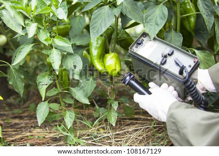 Measuring radiation levels of pepper - stock photo