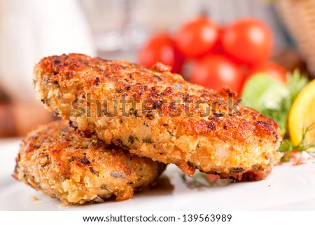 Meat cutlet - stock photo