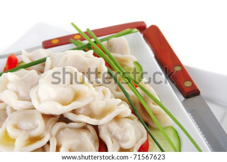 meat dumplings served on white plate with peppers - stock photo