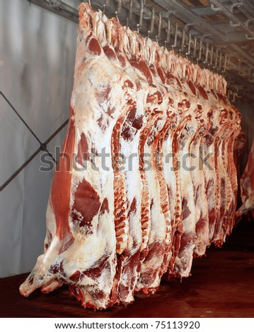 meat industry - stock photo