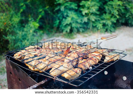 meat is fried at the stake. the kebabs fry on the grill. - stock photo