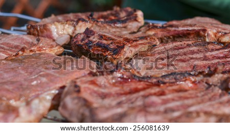 Meat on grill barbecue closeup. Horizontal