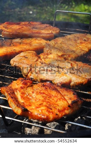 meat on the barbecue in summer showing food concept