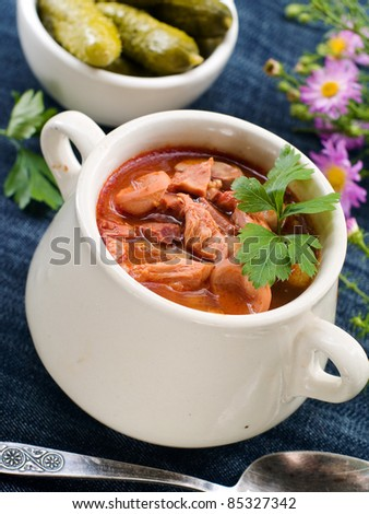 Meat soup with parsley in pot. Selective focus