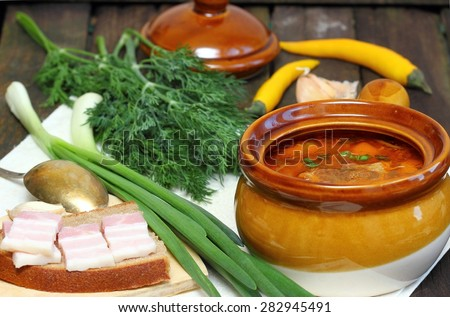 Meat soup with vegetables . - stock photo