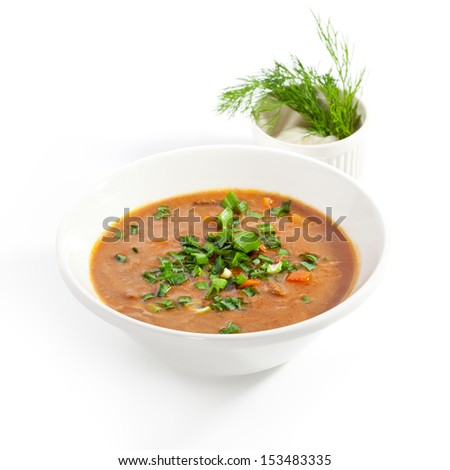 Meat Sour Soup with Sour Cream - stock photo