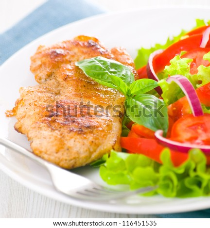 meat with vegetable salad - stock photo