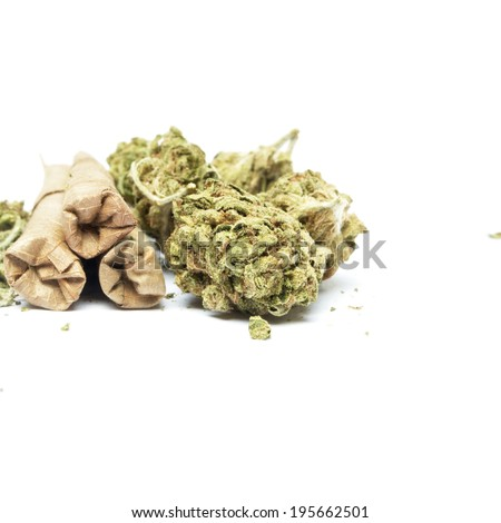 Medical Cannabis and Marijuana