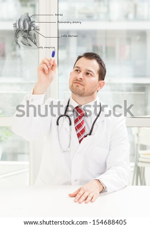 Medical concept of cardiologist explaining the human heart - stock photo