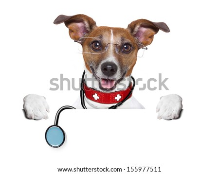 medical doctor dog behind a blank banner - stock photo