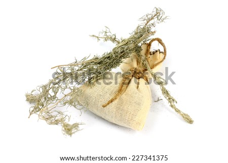 medical herb wormwood and linen bag for conservation - stock photo