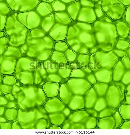 Medical Macro Cells Background - stock photo