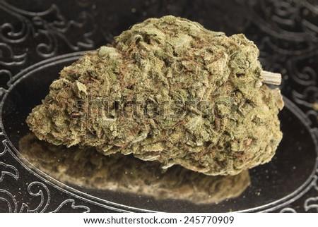 Medical Marijuana Bud  - stock photo