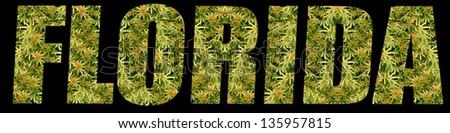 Medical Marijuana Florida - stock photo